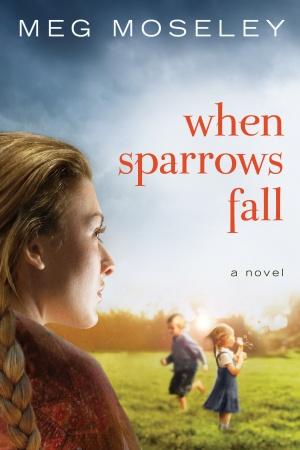 when_sparrows_fall